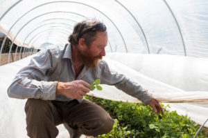 independent farmer