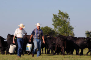 american ranchers and cattlemen
