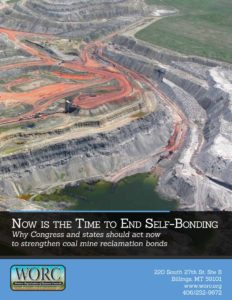 Coal self bond report